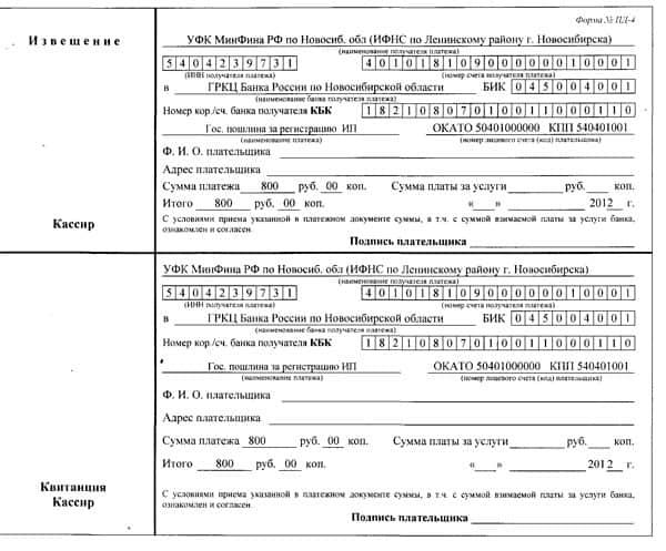 Документ подтверждающий уплату государственной пошлины образец