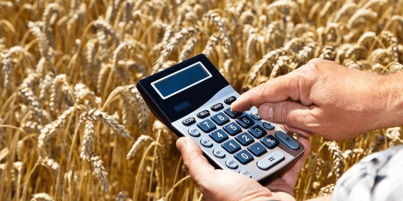Расчет фермера на калькуляторе