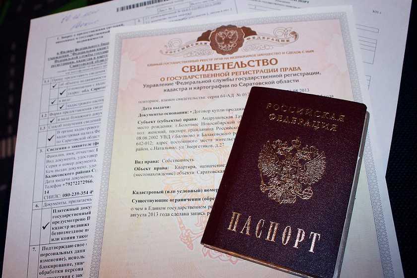 Паспорт и свидетельство