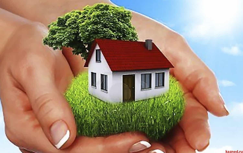 Недвижимость в руках