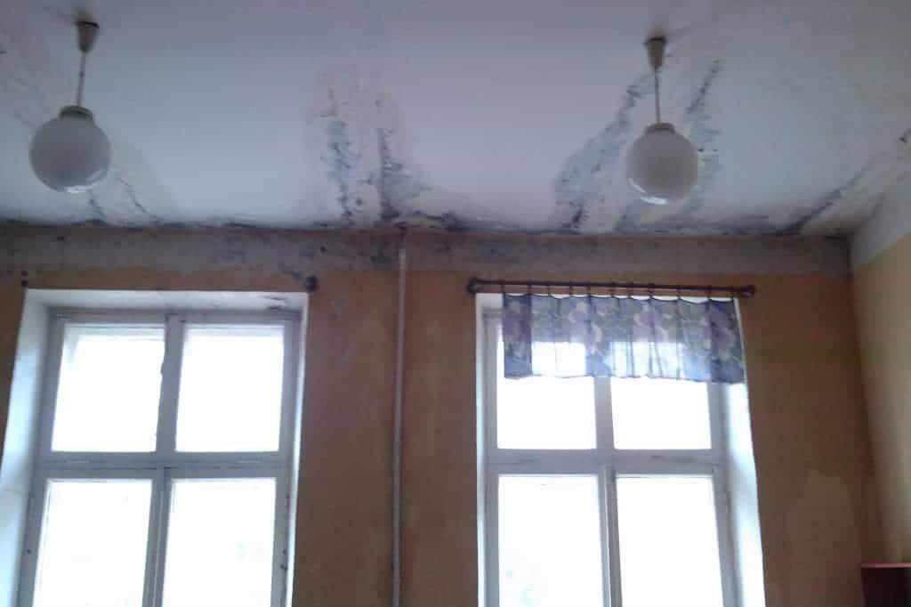 Грибок на потолке