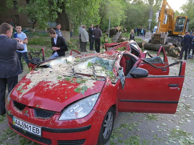 падение дерево на авто
