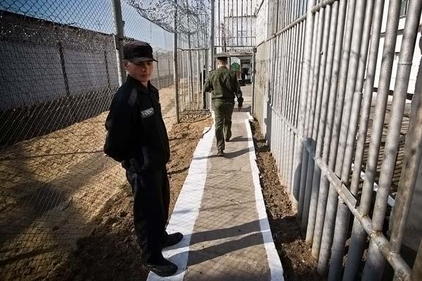 Чем отличается тюрьма от зоны или колонии