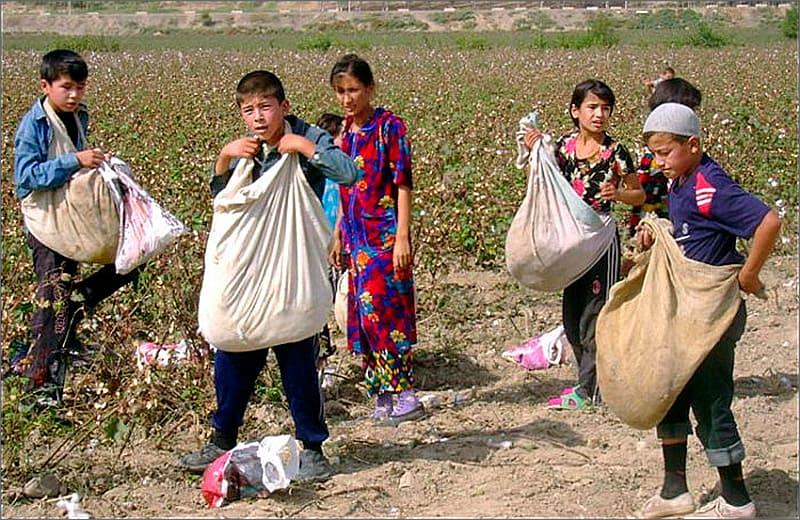 незаконное привлечение детей к труду