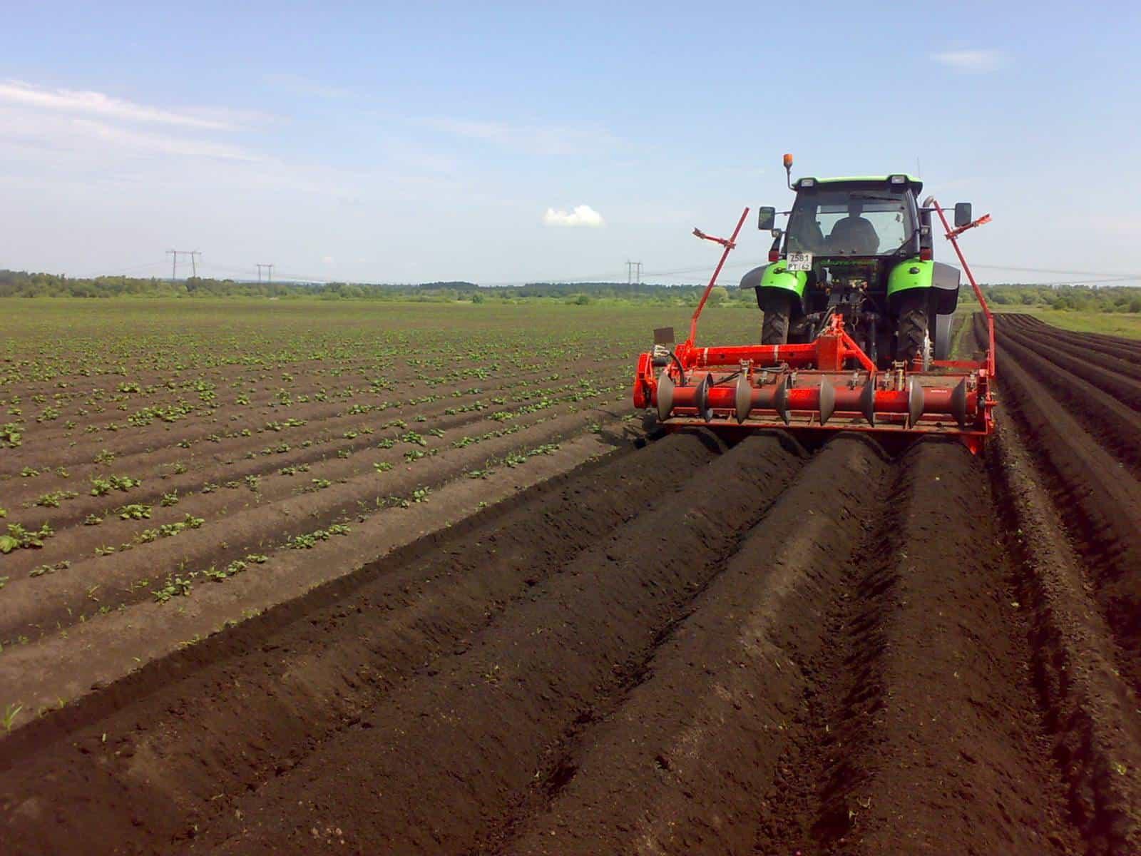 Как открыть фермерское хозяйство