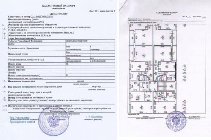 Что прописано в паспорте?