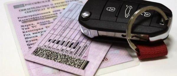 Забыл водительские права - штрафы и санкции